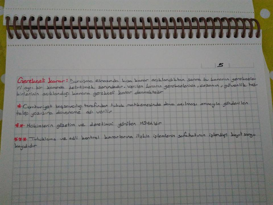 klem5.jpg